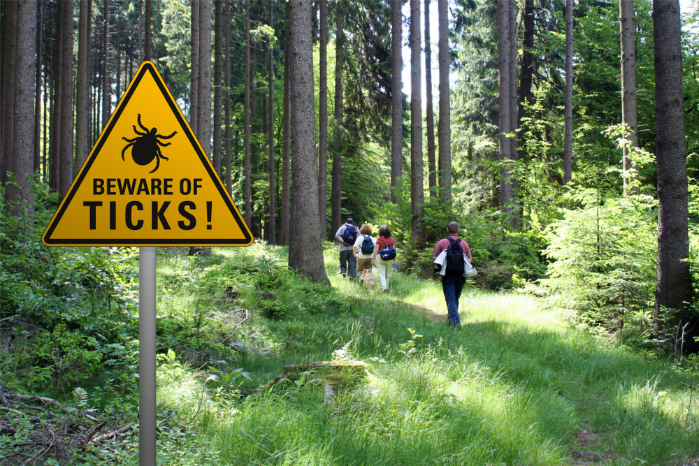 "Warning sign ""beware of ticks"" in infested area in the green forest with walkers"