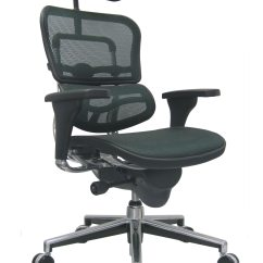 Raynor Ergohuman Chair Little Tikes Table And Set Mesh High Back Office By Eurotech Seating