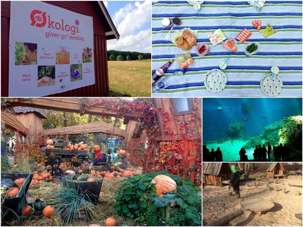 10 udflugter for børn i efterårsferien
