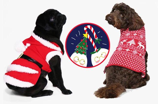 manteau pour chien les manteaux de