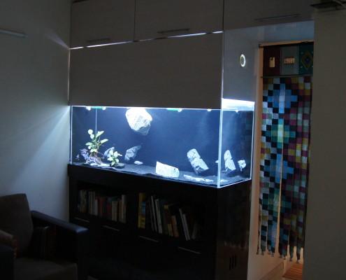 Custom beautiful glass tank by madoverfish