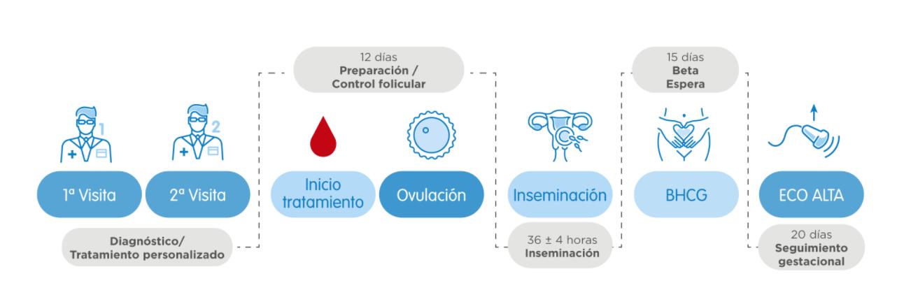 como se hace la inseminación artificial