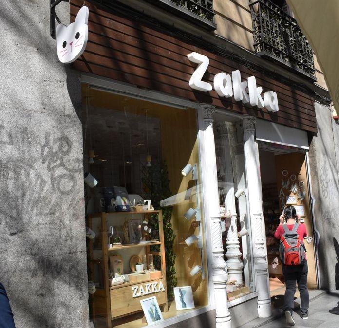 Locura por los cactus en Madrid: cuatro tiendas donde no pincharás 5