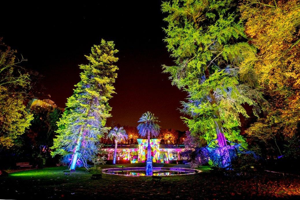 La luz navideña enciende el Jardín Botánico 5