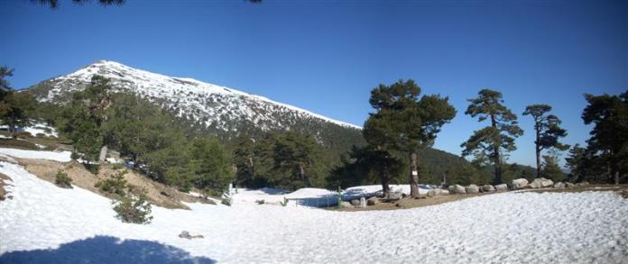 Dehesa de Cercedilla con nieve