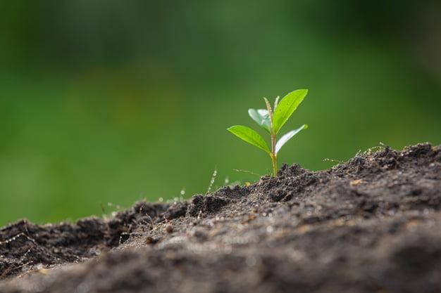 Una Semana del Medio Ambiente 2021 de Sanse centrada en el reciclaje 1