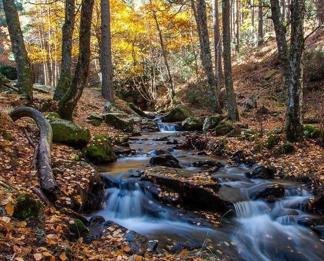 Diez lugares recónditos para descubrir el Madrid más inédito 16