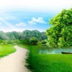 Contenido mínimo de la memoria ambiental para las actividades recreativas