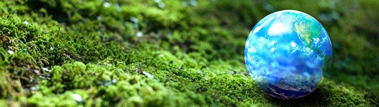Contenido memoria ambiental