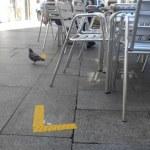 Tramitación para autorización de la instalación de terraza y veladores