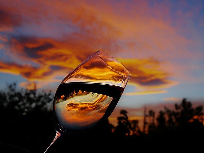 7 vinos para recibir el otoño