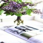 revistas septiembre 2017