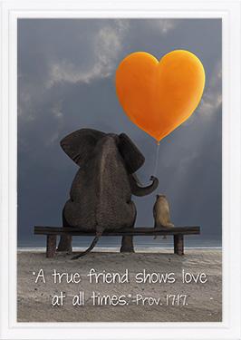 friendship card pr 17