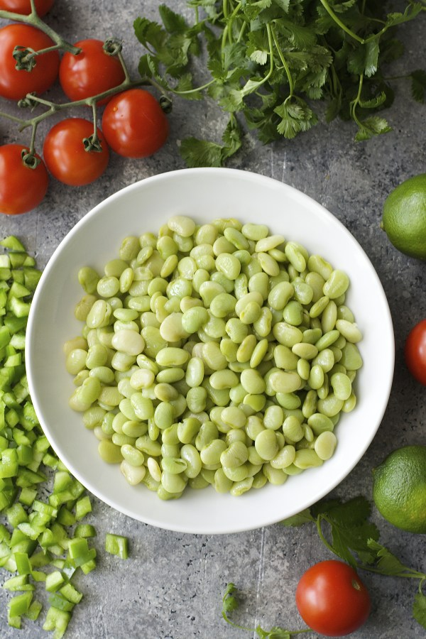 Tender Lime Beans are combined with tomatoes and peppers and tossed in a zesty sauce! Grab some chips and get to snacking! You will love this easy Lima Bean Salsa!
