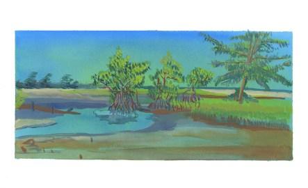 La mangrove, Carabane, Casamance, encre et gouache sur papier blanc