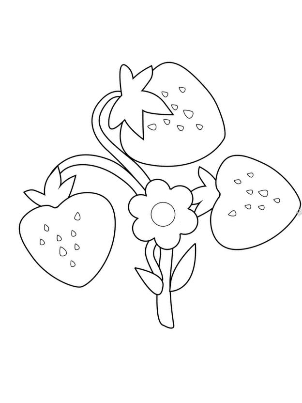 Malvorlage Erdbeere 26 zum Ausdrucken Märchen aus aller
