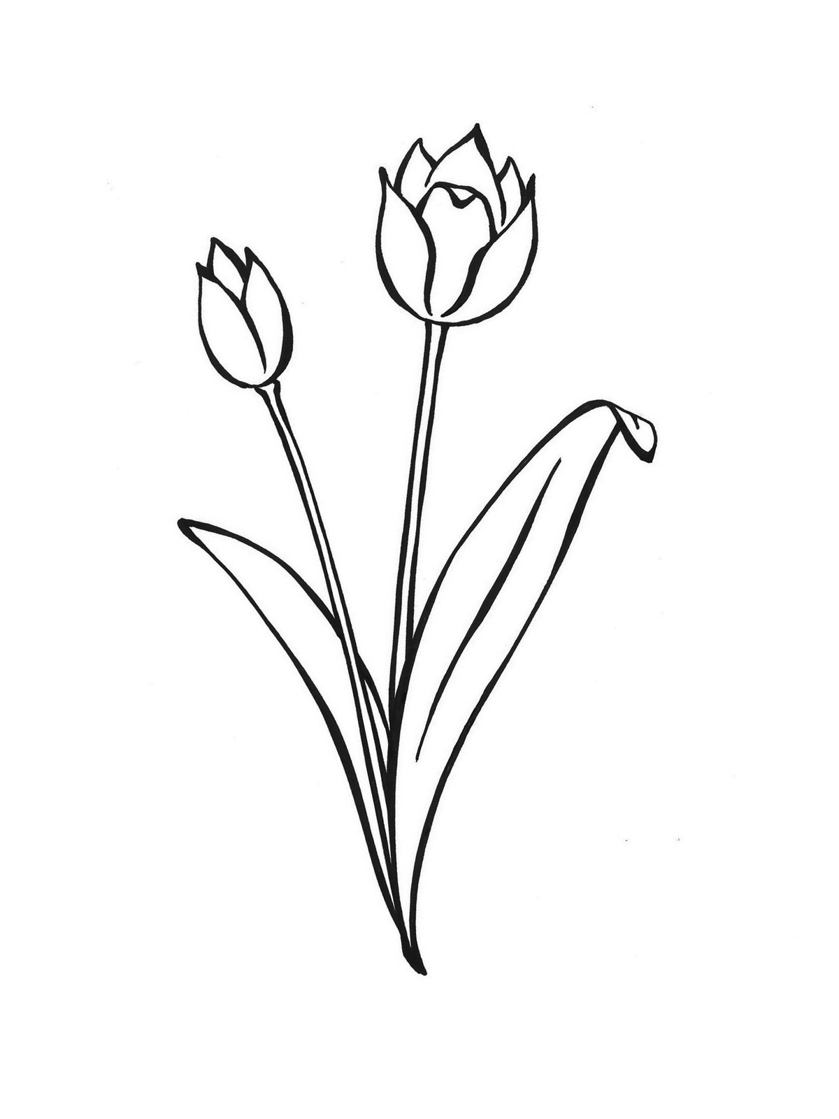 Ausmalbilder Malvorlagen von Frühling kostenlos zum