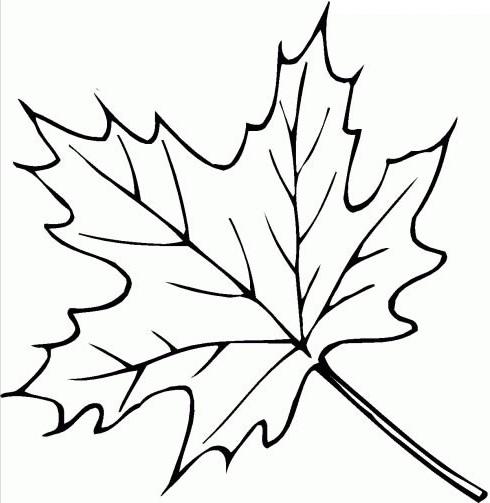 Ausmalbilder Malvorlagen - Blätter kostenlos zum