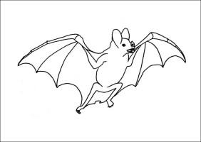 Ausmalbilder, Malvorlagen – Fledermaus kostenlos zum ...