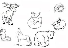 Ausmalbilder, Malvorlagen – Waldtiere kostenlos zum ...