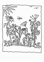 Ausmalbilder, Malvorlagen von Wiesenblumen kostenlos zum ...