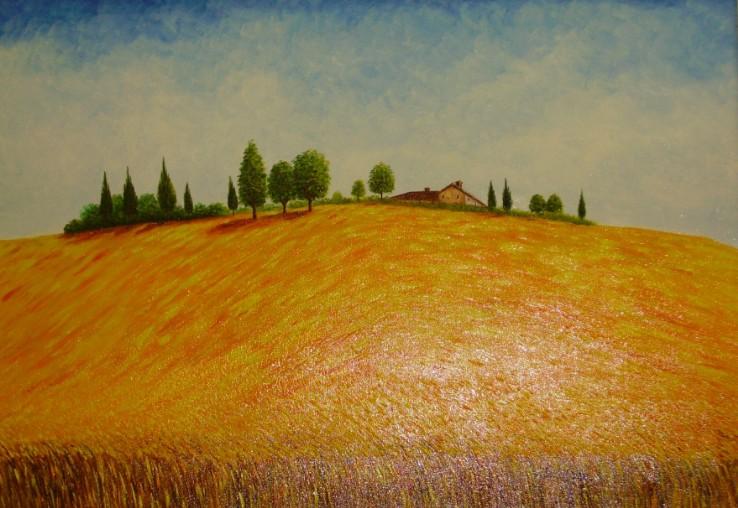 Campagna Toscana con grano  olio su tela cm 60 x 80  Maestro Roberto Bernabini