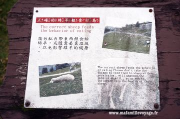 Instructions à la Qingjing Farm