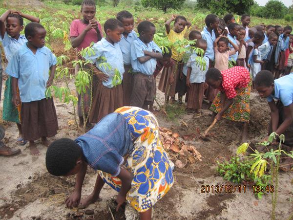 Demonstrating their skills in farming.