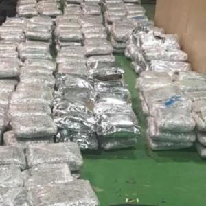 Голема акција на МВР во Гевгелија, запленета голема количина на дрога