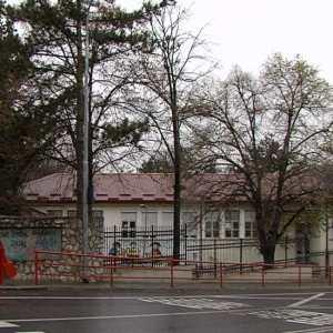 """Силување во училиштето """"Кочо Рацин"""" во Скопје"""