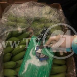 Кокаинот во Крушопек стигнал во пратка со банани (фото)