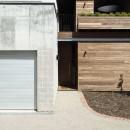 Linear House 3