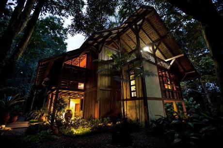 Лесной дом в Бразилии 4