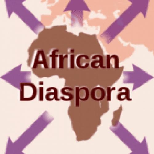 Diaspora africaine: Antilles, Guyane, Africains en Europe, Haïti...Que peut donner cette réforme pour la dignité des peuples africains ou d'origine africaine de Macron dans cette «Francophonie qui va mal» ?
