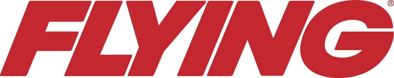 Image result for flying mag logo