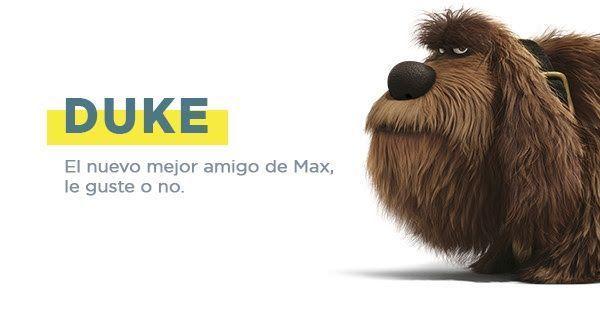 DukeMascotas - MagaZinema