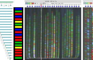 Automated gene sequencing