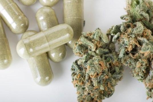 Cannabis épilepsie