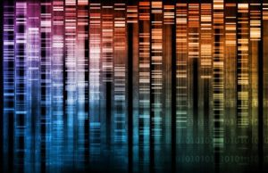 DNA library