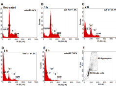 Measuring apoptosis by microscopy and flow cytometry