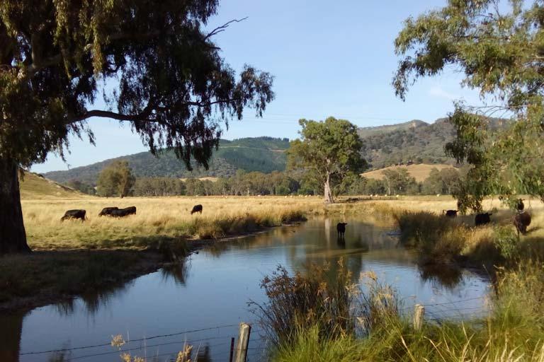 Beautiful countryside around Myrtleford, Victoria
