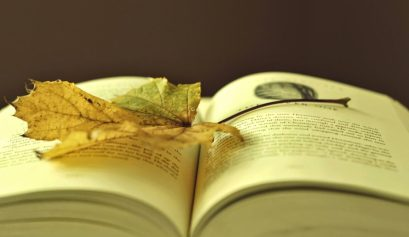 liść na książce