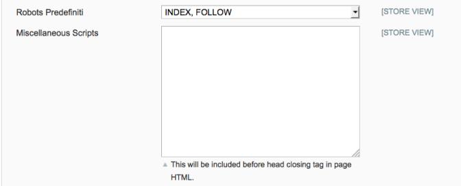 seo magento robot index