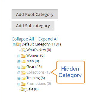 hidden category magento2