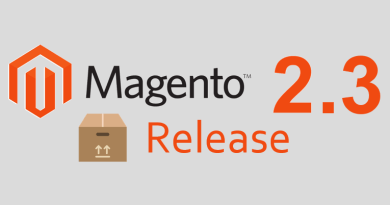 Everything to know about Magento 2.3.1