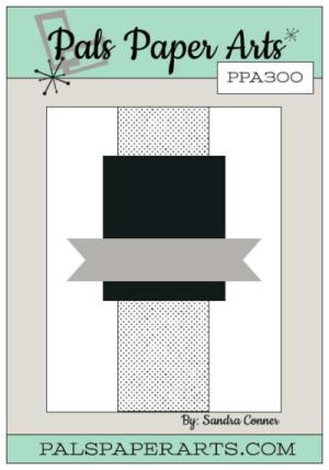 PPA 300