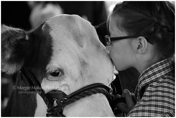 girl with Hereford