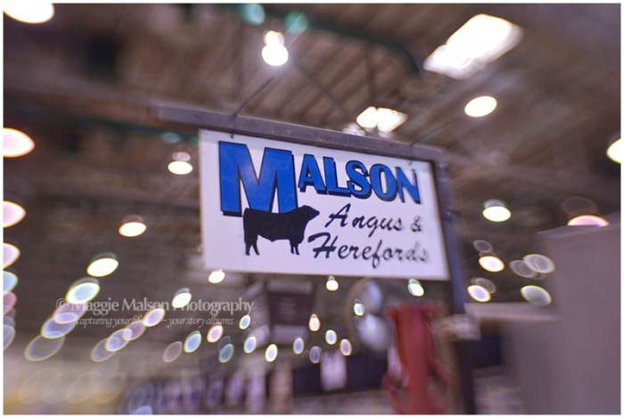 Malson Angus & Herefords
