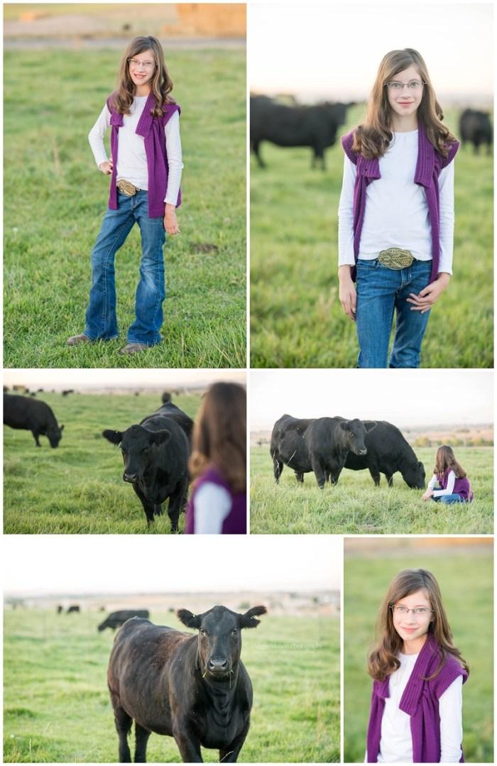livestock photographer