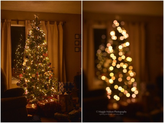 christmas2016dsc_7115_web